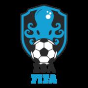 ESA FIFA